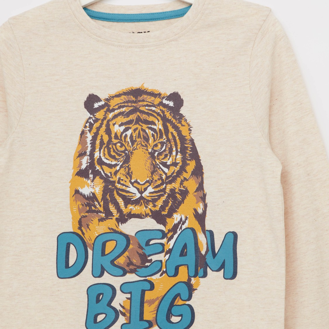 Graphic Print T-shirt with Round Neck Long Sleeves
