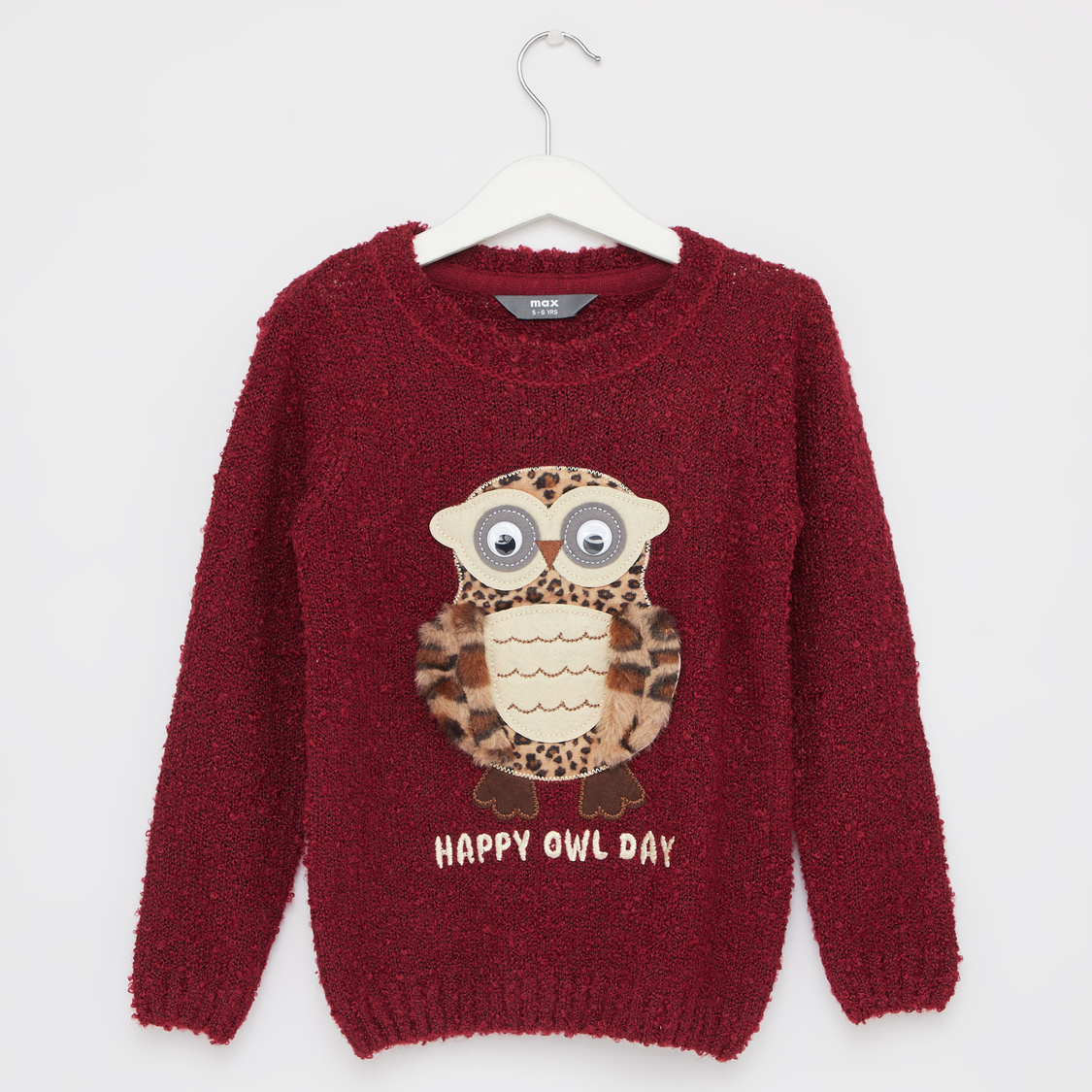 Owl Textured Sweater with Round Neck and Long Sleeves