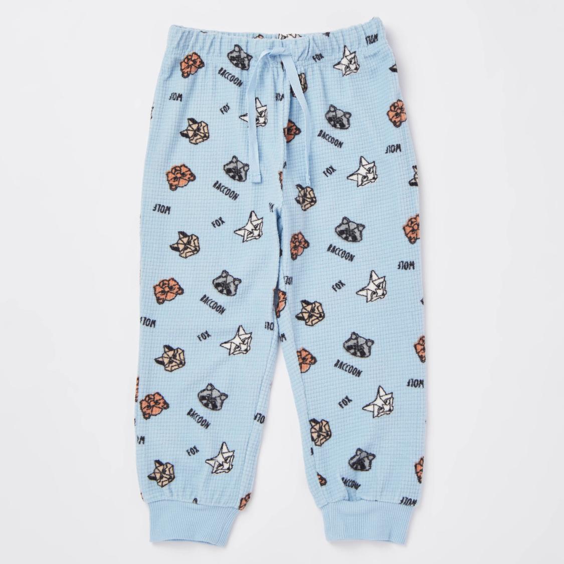 Cozy Collection Racoon Print T-shirt and Full Length Pyjama Set