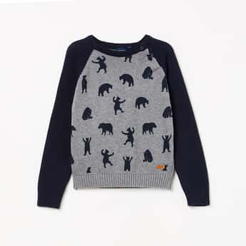 JUNIORS Boys Textured Raglan Sleeves Sweater