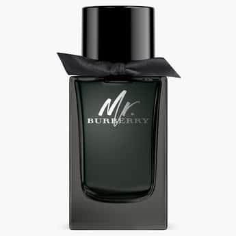 BURBERRY Mr. Burberry Eau De Parfum