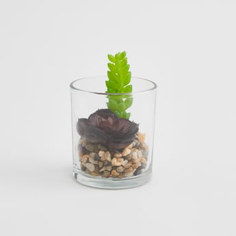 Artificial Plant with Pot - 13x7 cms