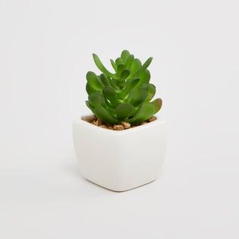 إناء زرع نبات اصطناعي - 5x5x9 سم