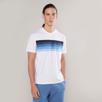 Striped T-shirt with Round Neck and Short Sleeves