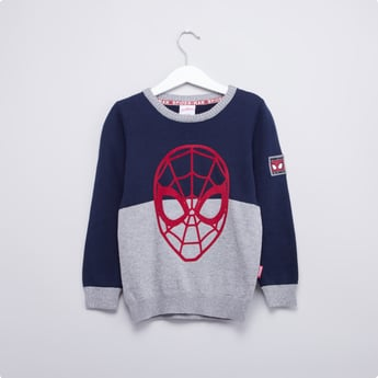 Spider-Man Printed Sweater with Round Neck and Long Sleeves
