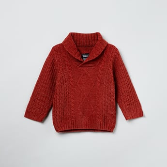 MAX Cable Knit Shawl Collar Sweater