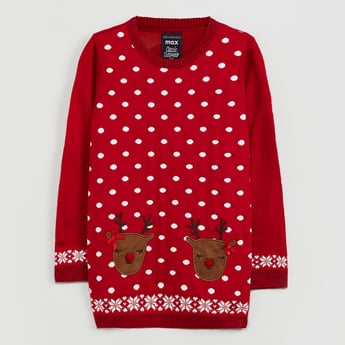 MAX Applique Detail Full Sleeves Sweater
