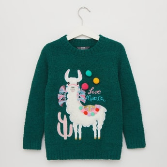 Llama Textured Round Neck Sweater with Long Sleeves