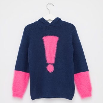 Applique Sweater with Long Sleeves and Hood