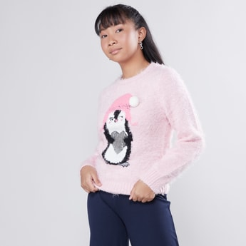 Plush Sweater with Round Neck and Long Sleeves