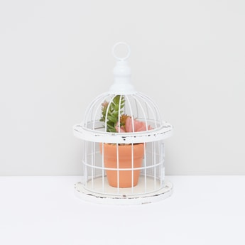Decorative Potted Plant with Cage