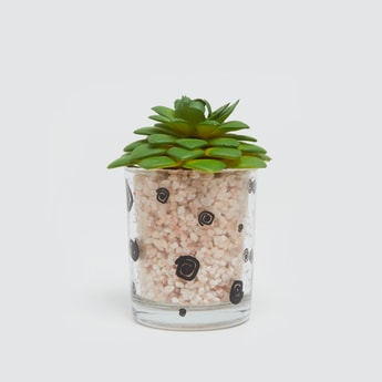 Potted Plant - 6x6 cms