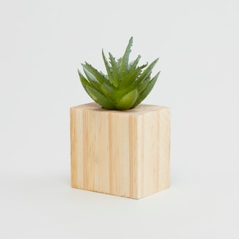 Potted Plant - 5x3 cms