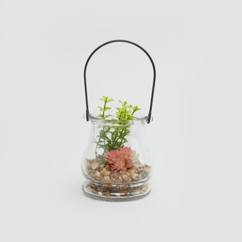 Decorative Plant in Jar with Handle - 9x9 cms