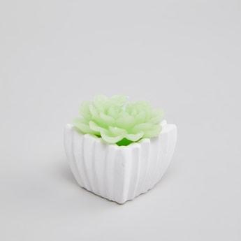 شمعة على شكل نبات - 6 سم