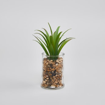 Decorative Potted Plant - 19x6 cms