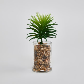 Potted Plant - 16x6 cms
