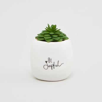 Artificial Plant with Pot - 8x7x10 cms