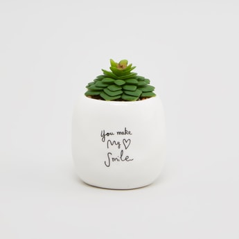 Artificial Plant with Pot - 8x7x10cms