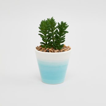 Artificial Plant with Pot - 9x9x16 cms