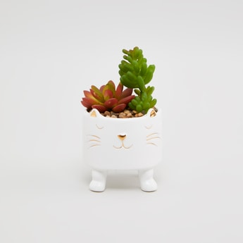 Decorative Potted Plant - 10x10x12 cms