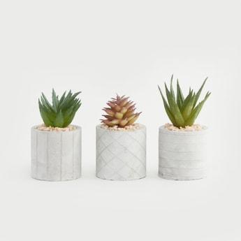 Set of 3 - Artificial Plant with Decorative Pot