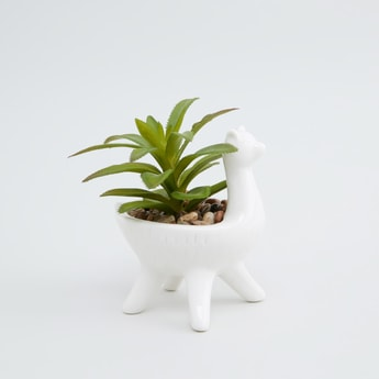 Decorative Potted Plant