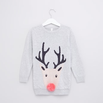 Deer Woven Round Neck Long Sleeves Sweater