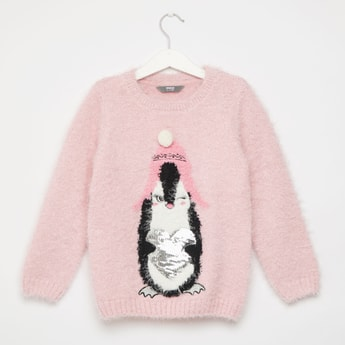 Textured Penguin Sweater with Round Neck and Long Sleeves