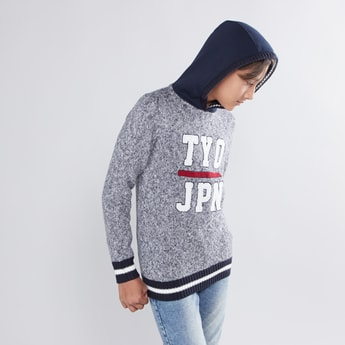 Textured Sweater with Hoodie and Long Sleeves