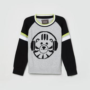 MAX Textured Raglan Sleeves Sweater