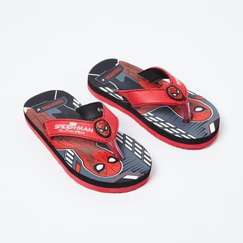 BIOWORLD Spiderman Print Flip-Flops
