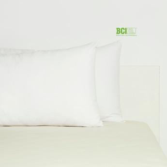 2-Piece Solid Pillow Case - 75x50 cms