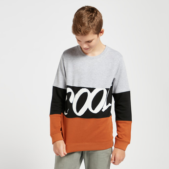 Colour Block Sweatshirt with Round Neck and Long Sleeves