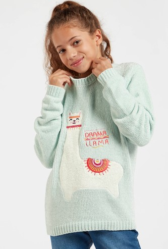 Llama Embroidered Sweater with Round Neck and Long Sleeves
