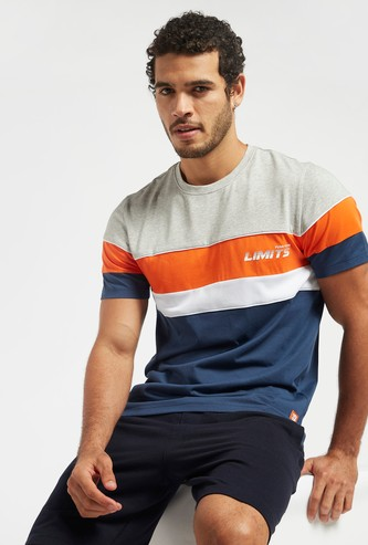 Colourblock T-shirt with Crew Neck and Short Sleeves