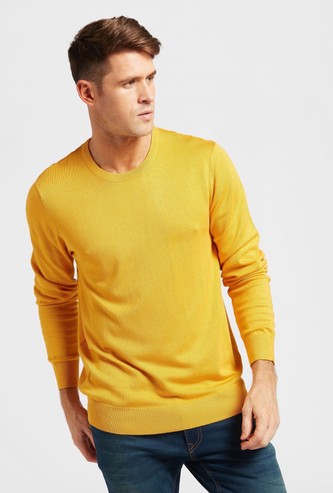 Solid Crew Neck Sweater with Long Sleeves