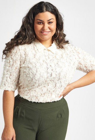 Lace Top with Collar and Short Sleeves