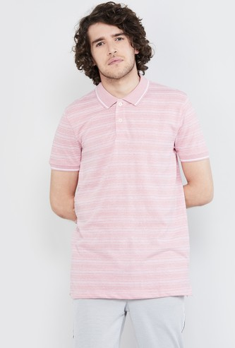MAX Striped Short Sleeves Regular Fit Polo T-shirt