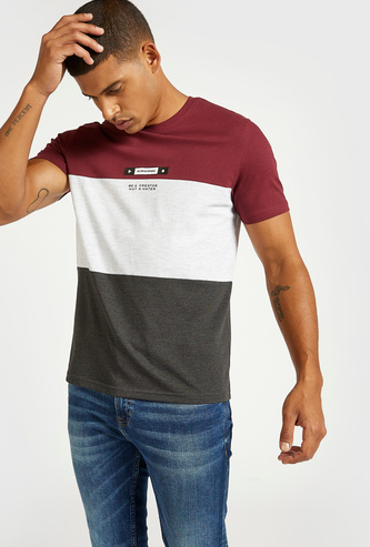 Colour Block Panel Detail T-shirt with Round Neck and Short Sleeves