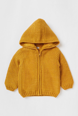 Textured Hooded Sweater with Long Sleeves and Zip Closure