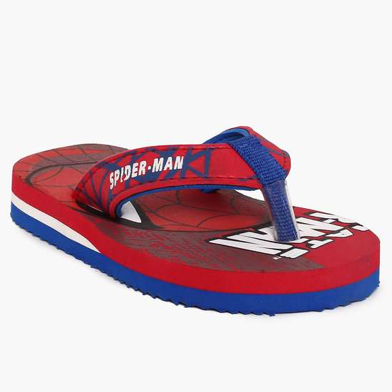 BIOWORLD Spiderman Print Slippers