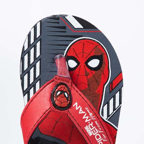 BIOWORLD Spiderman Print Flip-Flops