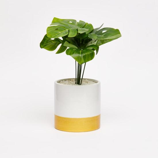 نبات اصطناعي في إصيص