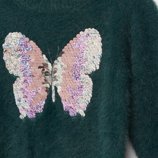Butterfly Embellished Round Neck Sweater with Long Sleeves