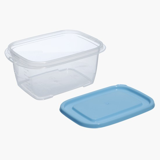 Rectangular Storage Container - Set of 3