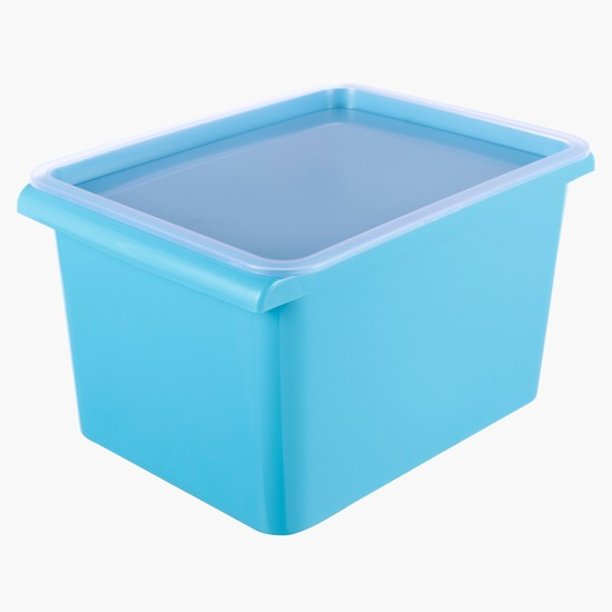Basket with Lid Closure