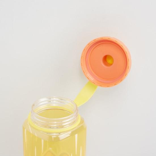Printed Water Bottle - 450 ml