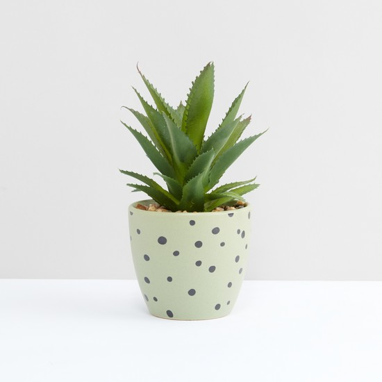 Decorative Plant with Printed Pot