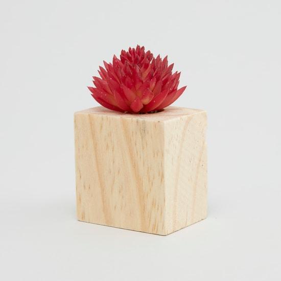 نبتة في إصيص مغنطيسي للديكور - 5x3 سم